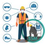Sistemele de protecție a securității și sănătății
